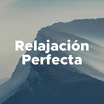 Relajación Perfecta - Una Collección de los Mejores Sonidos de la Naturaleza y Canciones Relajantes