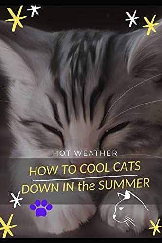 HOW TО COOL CATS DOWN ІN thе SUMMER: HOT WEATHER