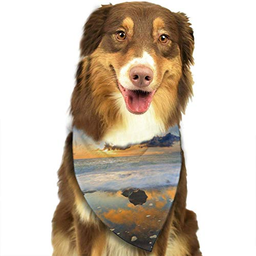 rwwrewre Hundehalsbänder Hunde Halstuch,Anemone Pool Reflections Triangle Bibs Fantasy Coo Scarfs,Soft Head Scarfs Accessories Pet bib Pet Supplies