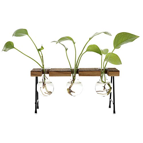 Hydroponic Bulb Vase Glass Planter Test Tube Vase w/Wooden Stand and Metal Swivel Holder for Hydroponics Plants Table Desk Decor (A3)