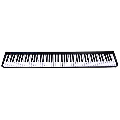HONEY JOY Digital Piano 88 Key Weighted, Full Size Portable Electric Piano Keyboard with Sustain Pedal, MIDI Touch Sensitive Keyboard with Bluetooth, Musical Teaching Keyboard Toy (Black)