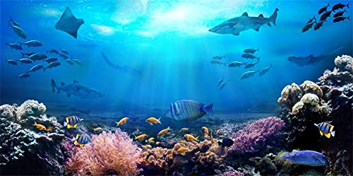 AOFOTO 6x3ft Underwater Scene Backdrop for Photography Aquarium Seabed Rocks Lights Coral and Tropical Fishes Under The Sea Background Parties Events Decoration Banner Photo Studio Props Vinyl