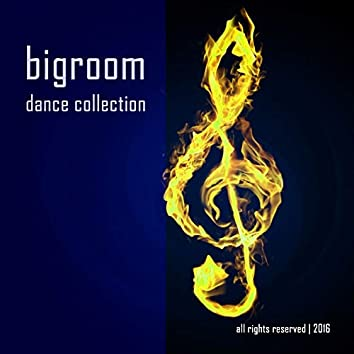 Big Room Dance Collection
