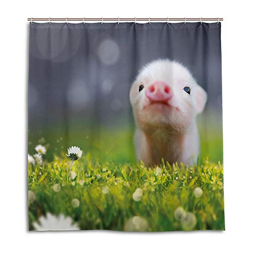 floolter Schönes Schwein Duschvorhang verdicken wasserdichtes schimmeliges Polyestertuch 180 × 180 cm