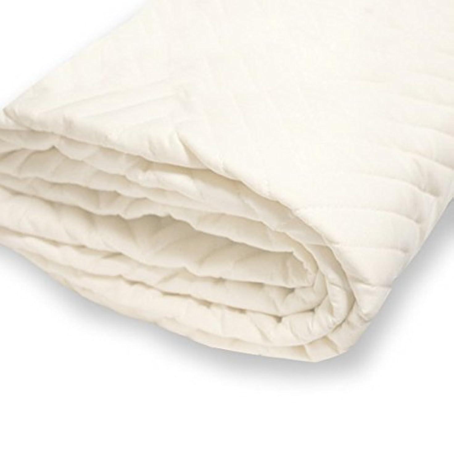 親指超越する幸運なイー?ユニット 抗菌防臭防ダニ ベッドパッド 洗い替え2枚セット マイティトップ2使用 日本製 (ファミリーサイズ 200×195)