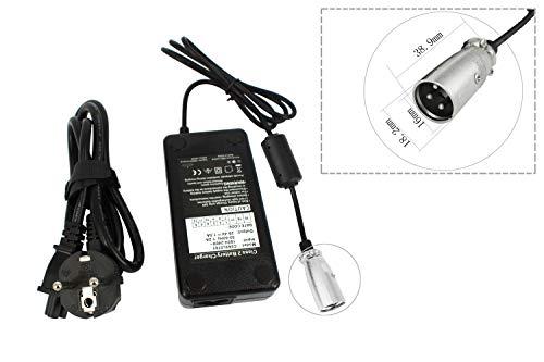 PowerSmart - Cargador para batería de ion de litio de 24 V para bicicleta eléctrica, Pedelec