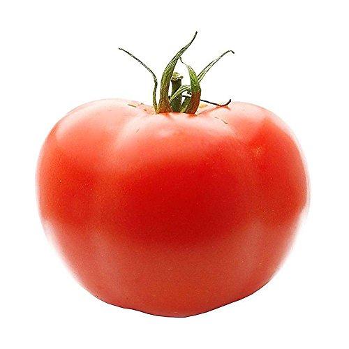 Star Eleven Hybrid Beef Vegetables Tomato Extra-Tasty Organic Food Seeds Giant 100 Pcs/Bag