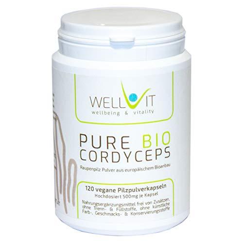 Pure Bio Raupenpilz 120 Kapseln je 500mg Cordyceps sinensis Vitalpilzpulver aus EU-Bio-Landwirtschaft, vegan, ohne künstliche Zusatzstoffe