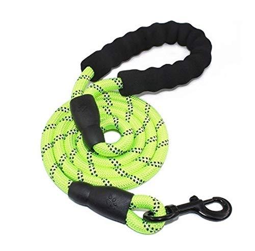 Sicherheitsgeschirre YSJ 5 Ft Starke Hundeleine Komfortabler Griff in hohem Grad reflektierten Themen Medium Large Hunde Blau (Color : Green)