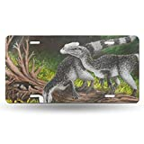yiliusu-Baby Allosaurus Design Pattern Durable and Strong Aluminum Car License Plate 6inch X 12inch6inch X 12inch