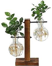 Skrivbord glaskruka, växtterrarium, rundkolv, glödlampsformad vas med trästativ, vintage, förökningsstation, vattenodling, glasvas plantering för plantering av hydroponiska växter, vaser för hem, kontor, trädgård, bröllopsdekor.
