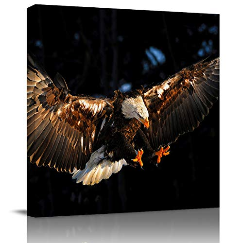 Lazone Bathroom Pictures Wall Art,Cool 3D Eagle Animal Pattern Framed Canvas Paintings Prints for Bedroom,Kitchen,Living Room,Office Wall Decor,Modern Home Decorations Photos,8x8in