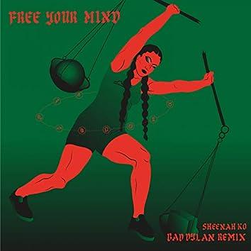 Free Your Mind (feat. Sheenah Ko) [Remix]