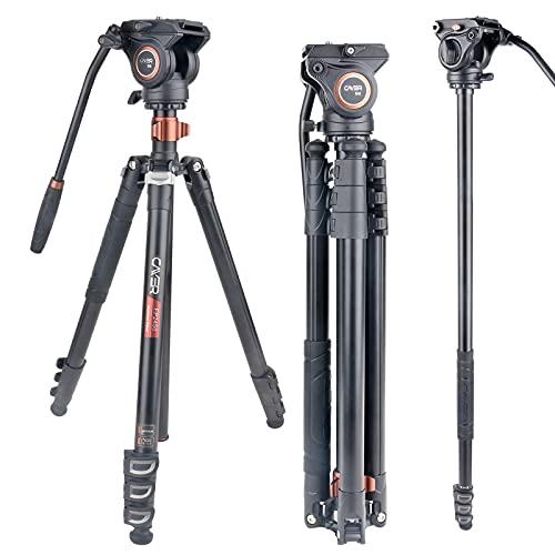 Trípode de Cabeza fluida, trípode de cámara de Video Cayer FP2450H4 Monopie de aleación de Aluminio de 75 Pulgadas para cámara Canon Nikon Sony DSLR