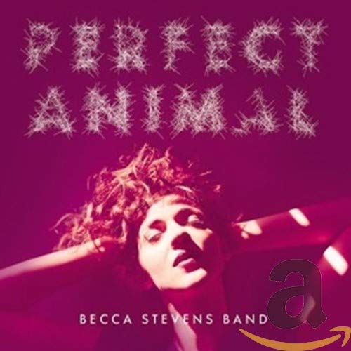 Becca Stevens Band - Perfect Animal