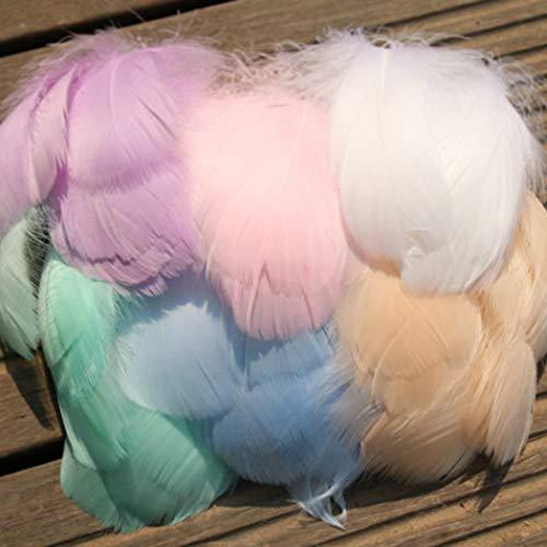 GCOA - 700 plumas coloridas de 8 a 12 cm para manualidades, bodas, cumpleaños, decoración del hogar, festivales, fiestas (7 colores)