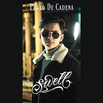 Perro de Cadena