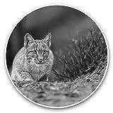 Impresionantes pegatinas de vinilo (juego de 2) 30 cm BW – Eurasian Lynx Big Cat divertidos calcomanías para portátiles, tabletas, equipaje, reserva de chatarras, neveras, regalo genial #35285