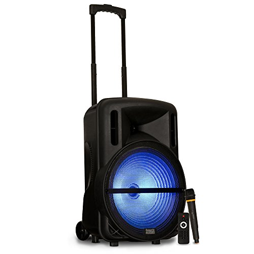 Acoustic Audio by Goldwood Powered Speaker Cabinet, Battery 15' Bluetooth LED Display and Wireless Mic (PRTY152)