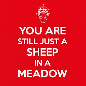You Are Still Just a Sheep in a Meadow