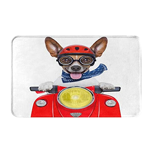 KASMILN carpet bath mat,rug,Red Funny Crazy Silly Motorbike Dog Helmet And Sticking Out The Tongue Summer,Soft,absorbent,non-slip,thick,mat for bathroom/door/kitchen floor mats,entrance