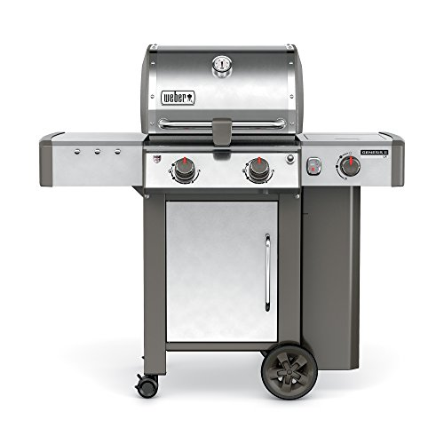 Weber-Stephen Products Weber 60004001 Genesis II LX S-240 Liquid Propane Grill, Stainless Ste, Two-Burner, Steel