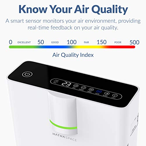 Hathaspace Smart True HEPA Air Purifier - Best Air Purifier for Pets