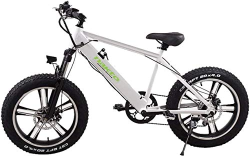 RDJM Bici electrica, 500W Bicicleta eléctrica, 26 '' Fat Tire E-Bici, Fat Tire E-Bici, Agua y al Polvo Desmontable Llamadas telefónicas 48V 10AH (Color : White)