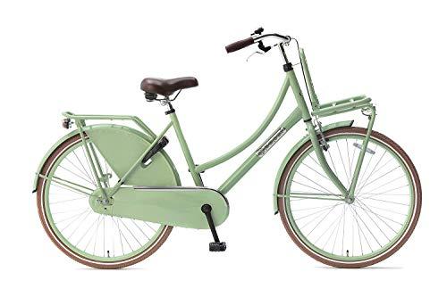 Popal Daily Dutch Basic Kinderfahrräder Mädchen 26 Zoll 46 cm Mädchen Rücktrittbremse Grün