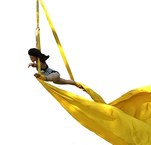 E-Bestar 10 Meter Premium Aerial Silks DIY Equipment Aerial Yoga Hammock Safe Deluxe...