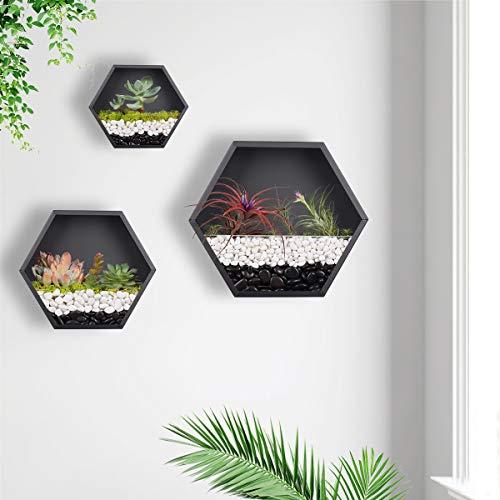 Macetero hexagonal colgante para pared, macetero de metal, soporte retro para plantas de aire, maceta vintage, maceta geométrica de hierro, contenedor de cactus suculentos, juego mixto de 3(negro)
