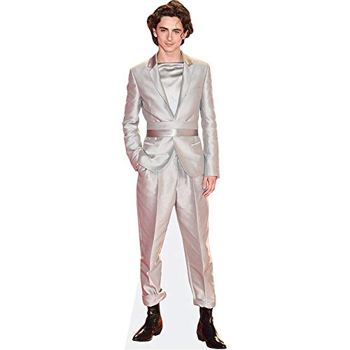 Celebrity Cutouts Timothee Chalamet (Silver Suit) Pappaufsteller Mini