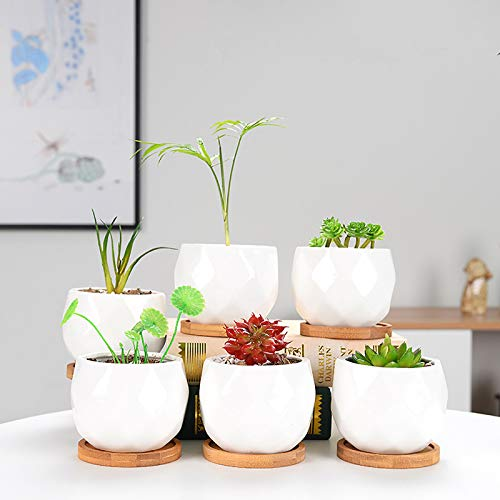 Succulent Pots, OAMCEG 3.54 inch Geometric Succulent Planter, Set of 6 White Ceramic Succulent Cactus Planter Pots with Bamboo Tray(Plants NOT Included)