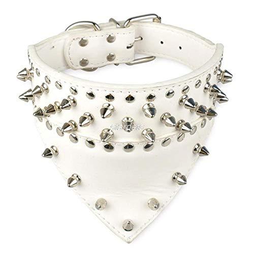 Collar Perro Ajustable 2