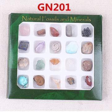 ExcLent Au Natürliche Edelsteine Steine Vielfalt Sammlung Kristalle Kit Mineral Geologische Lehrmaterialien - #2