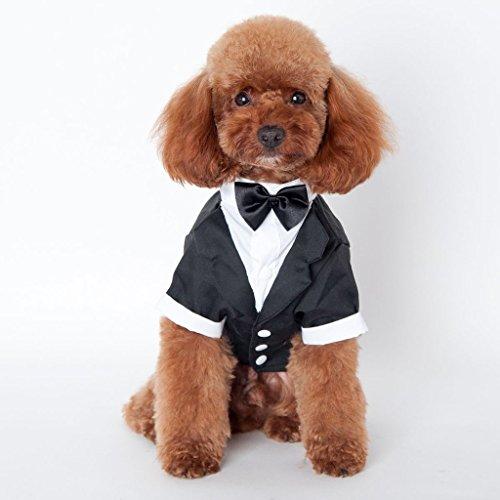 TQP-CK Animali Partito Formale Vestito Costume Cane Abbigliamento Cappotto Abbigliamento