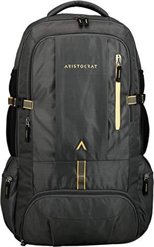 Aristocrat 45 Ltrs Grey Rucksack