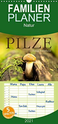 Pilze - fleißige Waldarbeiter - Familienplaner hoch (Wandkalender 2021, 21 cm x 45 cm, hoch)