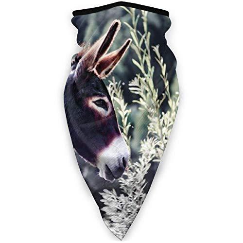 Lindo burro Papel pintado al aire libre Cara Boca Mscara a prueba de viento Deportes Mscara Esqu Escudo Bufanda Pauelo Hombres Mujer