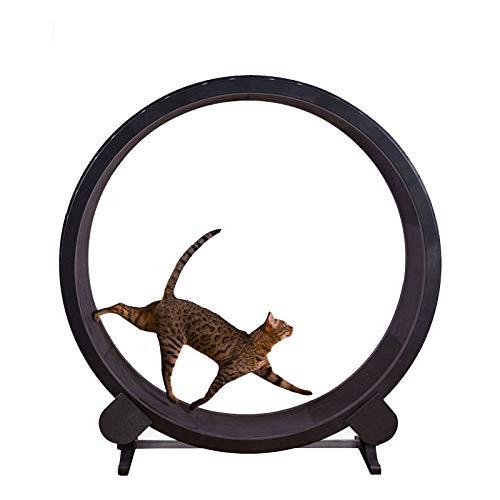 TWW Treadmill Ferris Wheel Pet Furniture Cat Scratch Board Grab Crawling Shelf Wheel Rotation Fitness Weight Loss Toys