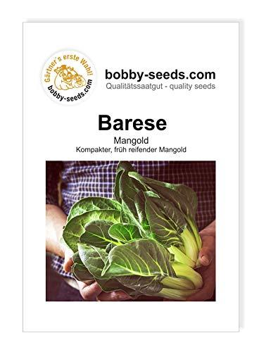 Bobby-Seeds Gemüsesamen Barese Mangold Portion