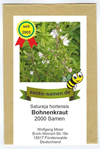 Bohnenkraut - Satureja hortensis (2000 Samen)