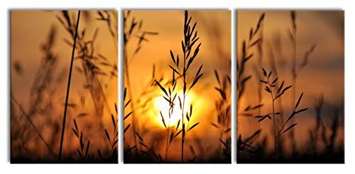 Gras bij zonsondergangXXL canvasbeeld 3 deel | 210x100cm volledige maatregel | Wanddecoraties | Kunstdruk