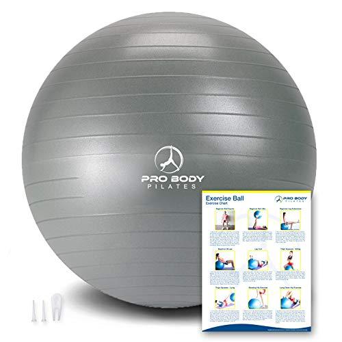Exercise Ball - Professional Grade Anti-Burst Yoga Fitness, Balance Ball for Pilates, Yoga,...