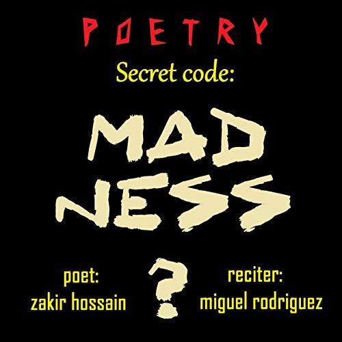 Secret Code: Madness? audiobook cover art