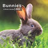 Bunny Calendar 2022 - 12 Months of High-Resolution Rabbit Photos Including Official Holiday Prompts - US/UK/CA