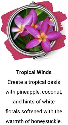 Paint Scentsations Tropical Winds List price 8 Limited time for free shipping - Pack of