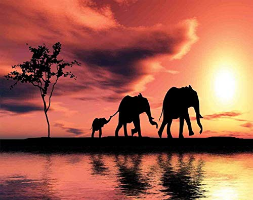 MQPPE Elephant 5D DIY Diamond Painting Kits, Elephant Silhouettes by River Animals Adventure Landscape Full Drill Painting Arts Set Craft Canvas for Home Wall Decor, 16' x 20', Coral Seal