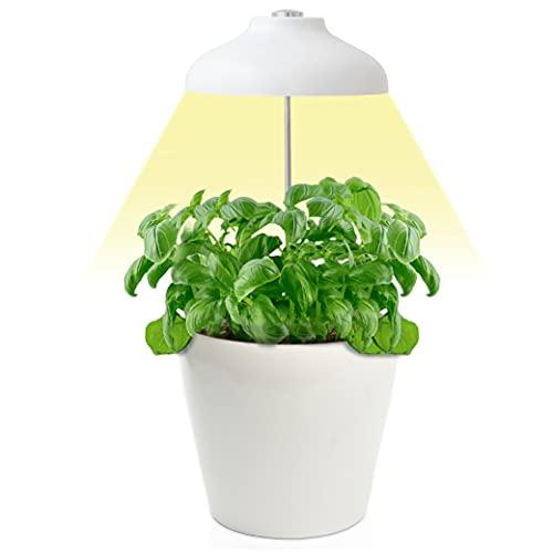Lámpara LED para Plantas Zenakio - Tamaño Ajustable, Temporizador Automático, 5V, Blanco - Ideal para Planta y Decorar Interior - Lampara de Crecimiento - Luz LED para Cultivo Plantas Naturales
