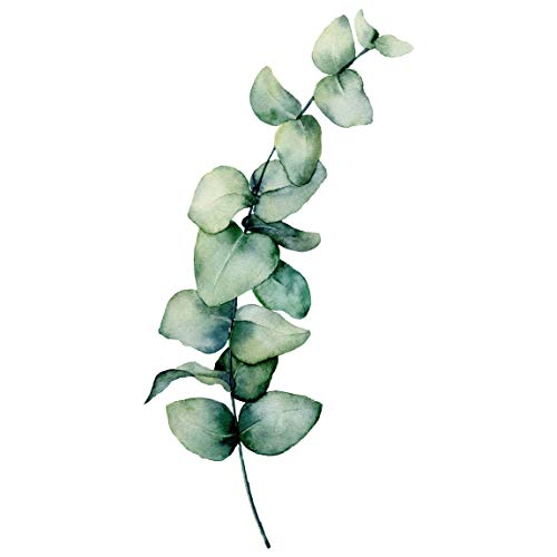Bilderwelten Wandtattoo selbstklebend Tapete Glas Möbel - Aquarell Eukalyptus XXL 180 x 90cm
